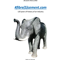 #fibre(S)cement.com: 120 years of the history of an industry (English Edition)