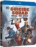 DCU : Suicide Squad le Prix de l'Enfer SBK /V BD