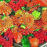 20 Servietten Herbstdekoration Blumen Früchte Astern Herbst 25x25 cm