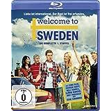 Welcome to Sweden - Die komplette 1. Staffel [Blu-ray]