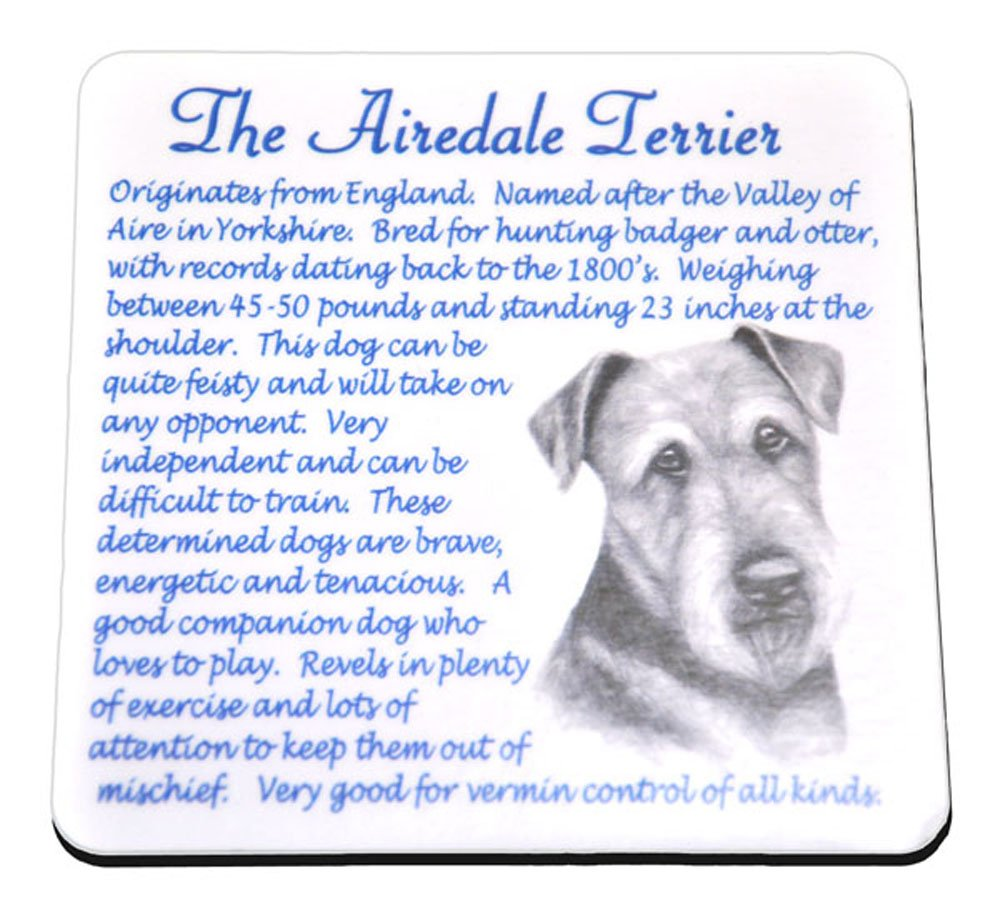 Airdale Terrier / Dog Origins and Breed Facts Drinks Coaster / Mat – Makes and Ideal Gift