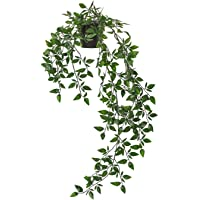 Hanging Artificial Plant with Plastic Pot for Indoor/Outdoor Home Decor (Green,Pack of 1)