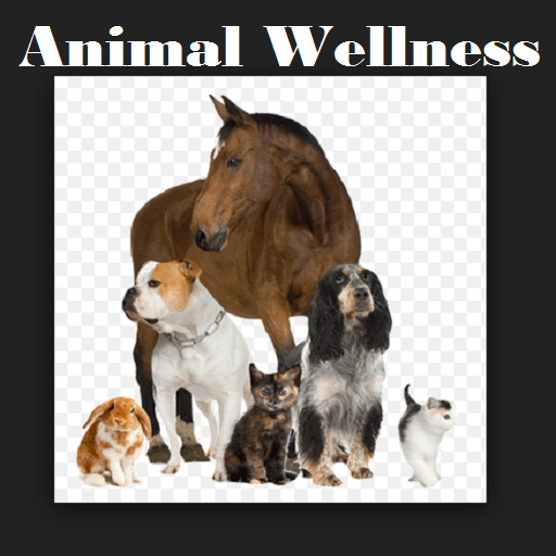 Tier Wellness -
