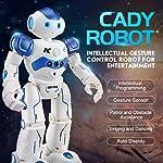 Alexsixs JJR/C JJRC R2 USB Charging Dancing Gesture Control RC Robot Toys for Children Kids Birthday Gift