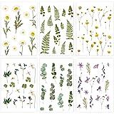 Sunbbingsp Scrapbooking Autocollant, 6 Pcs Gommettes Plantes, Autocollants Stickers Scrapbooking Nature pour Ordinateur Porta