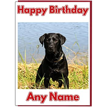 Black Labrador Birthday Card Amazoncouk Office Products