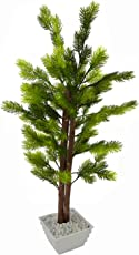 FancyMart Artificial Pine Bonsai Tree with White Square Pot(Height 60 cms / 24 inchs)