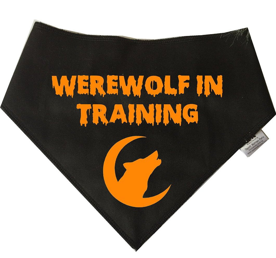 Spoilt Rotten Pets Werewolf In Training Dog Bandana Perfect For Halloween or Scary Fancy Dress Costumes For Dogs (Medium…