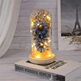 Mobestech Sunflower in a Glass Dome with LED Lights Decorative Table Lamp Preserved Flower Gifts for Her Mothers Day Valentin