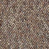 BODENMEISTER BM72181 Teppichboden Auslegware Meterware Schlinge braun beige 200, 300, 400 und 500 cm breit, Verschiedene Längen, Variante, 2 x 2 m