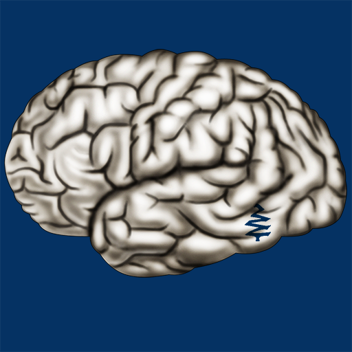 Cerebrum ID (Inc Blue Publishing, Tree)