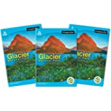 Classmate Long Book - Single Line, 172 Pages, 297 mm x 210 mm - Pack Of 3