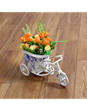 Trendifly Artificial Peonies Flowers with Cycle Shape Vase Basket Pot for Living Room Home Decor (Multicolour)