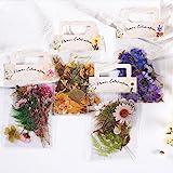 160 Pcs Stickers Fleurs Plantes Set,Autocollants Scrapbooking Transparents,DIY Décoratifs Stickers pour Scrapbooking Journal