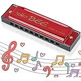 Harmonica Enfants, Harmonica Diatonique, Harmonica10 Trous pour Enfants, Instrument pour Débutants, Cadeaux pour Les Étudiant
