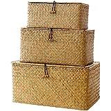 Lot de 3 Seagrass Paniers de rangement avec couvercle naturel en osier tissé boîte de rangement rectangulaire Seagrass blanch