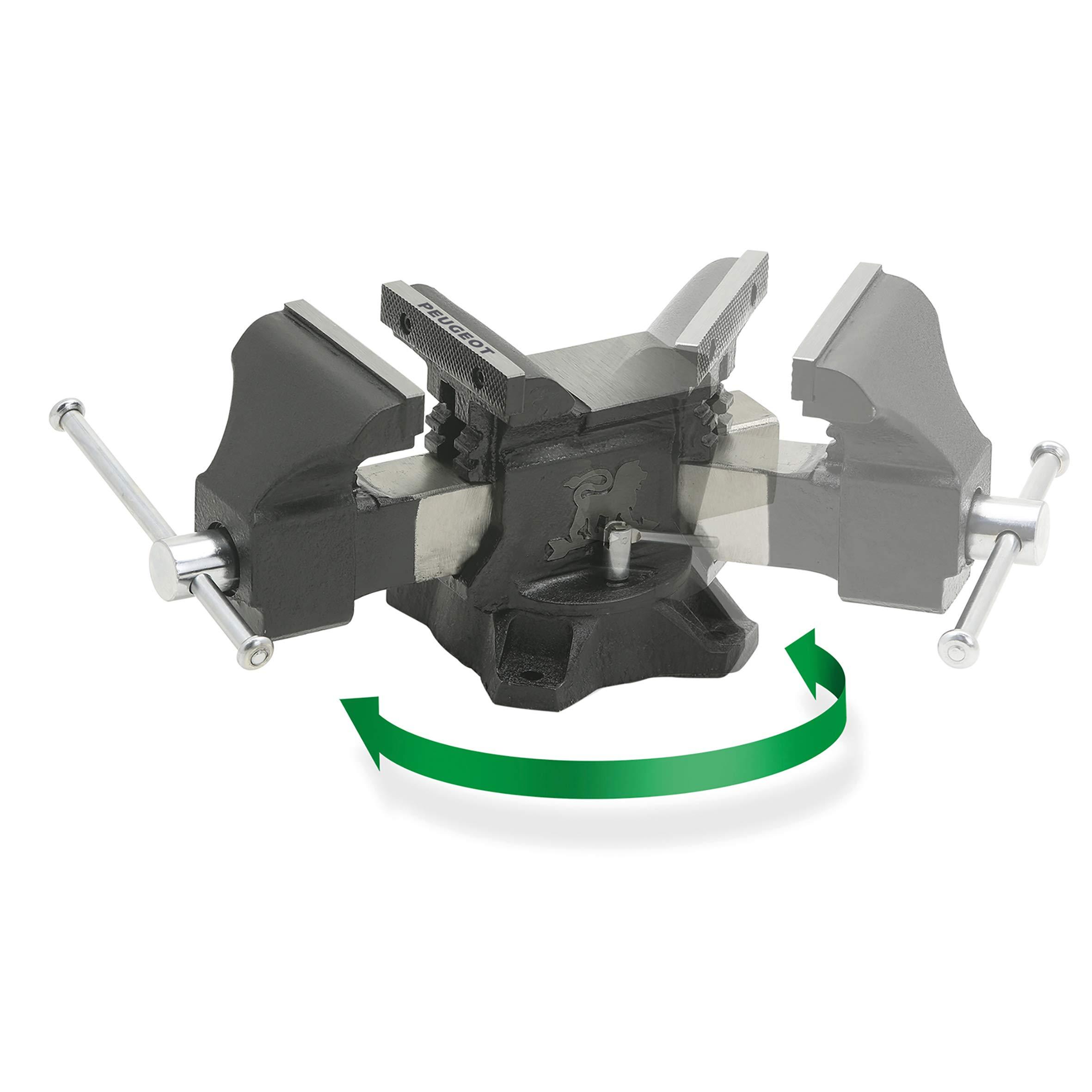 Tornillo de banco Heavy Duty Mordaza de banco 200 mm con yunque 8 Morsa de taller Uso insdustrial