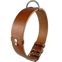 papuya New Collare per Cane di Taglia Media Grande con Manico (Labrador Golden Retriver Pastore Tedesco Bulldog Amstaff…