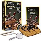 National Geographic- Excava y Descubre - Insectos, Multicolor (NGBUG) , color/modelo surtido