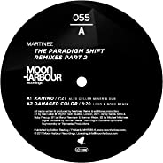 The Paradigm Shift Remixes (Part 2)