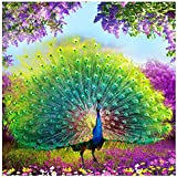 Rrimin DIY Diamond Embroidery Peacock Painting for Home Decoration 35*35 cm (No.6)