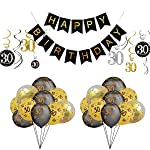 Birthday Party Decorations Kit Anniversary Supplies Happy Birthday Banner, Tinsel Foil Curtains, Foil Hanging Swirls...