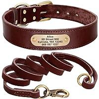 Didog - Collare per cani in morbida vera pelle, con targhetta identificativa incisa, colore marrone, verde e rosso, per…
