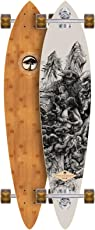 ARBOR Longboard Fish Bamboo Collection 39 Zoll (99,06cm)