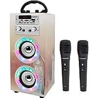 DYNASONIC - (3e génération) Haut-Parleur Bluetooth Portable avec Mode karaoké et Microphone, Radio FM et Lecteur USB SD…