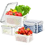 TBMax Fresh Food Storage Containers for Fridge, Plastic Produce Saver, 3 Pack Vegetable Fruit Storage Containers with Drain B