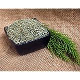 Naturix24 – Schachtelhalmtee, Schachtelhalmkraut geschnitten – 1 Kg Beutel