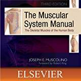 The Muscular System Manual: The Skeletal Muscles of the Human Body