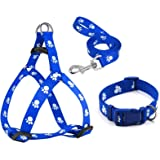 Petlicious & More 15 mm Paw Print Nylon Puppy Collar Harness & Leash Set for Small & Medium Dogs (Color May Vary) - Pack of (