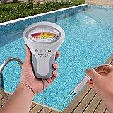 Interline 53160000 Elektronischer Pooltester für Chlor und pH-Wert Messung