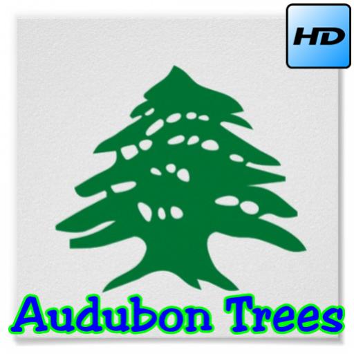 audubon-trees