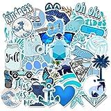 100Pcs Vinyl Cute Vsco Sticker Pack Luggage Laptop Guitar Water Bottle Decal Lot
