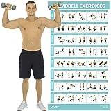 QuickFit póster de ejercicios de suspensión – doble cara ...