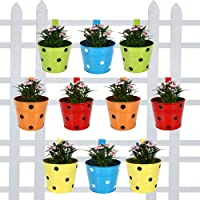 Trust Basket Round Dotted Railing Planters, Pack of 10