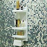 LOGGER SSS Bathroom Shelf (20 X 10 X 6 Inches, White)