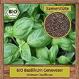 für ca 200 Pflanzen Kräutersamen SaatPur Basilikum Geronimo Genoveser Typ
