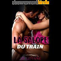 La Salope du Train: (Nouvelle érotique Trop trop Chaude)