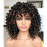 PRETTIEST Afro curly Wigs Black with Warm Brown Highlights Wigs with Bangs for Black Women Natural Looking for Daily Wear (Co