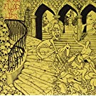 Flood of Lies [Vinyl LP]
