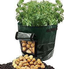 Dreamerd 2-Pack 7 Gallon Grow Borse / aerazione Tessuto Pentole / Borse Piantapatate con patta per coltivare ortaggi: patate, carote e cipolla