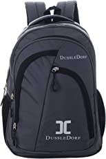 Dussledorf Polyester 20Liters Grey Laptop Backpack