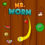 mr. worm