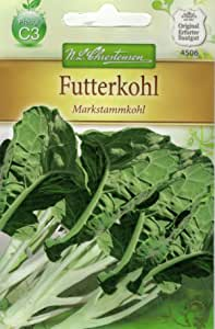 2000 Samen Markstammkohl vergessenes Gemüse Brassica oleracea