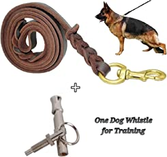 Petlicious & More Genuine Long Leather Dog Leash, 10 Ft