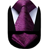 HISDERN Solid Paisley Tie for Men Handkerchief Woven Classic Flroal Men's Necktie & Pocket Square Set Wedding