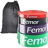 FEMOR Elastici Fitness 2080mm, Set da 4, Elastici Fitness Resistenza 10-120Lb, Elastici Fitness Lattice Naturale, Loop…